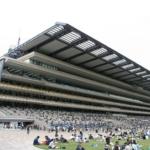 Tokyo_Racecourse_s