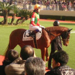 fujitananako_0303